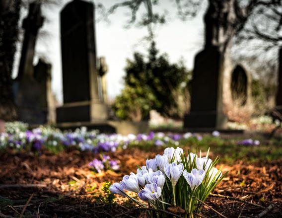 pohreb smútočná kytica, cintorín a jarné kvety, etika na pohrebe