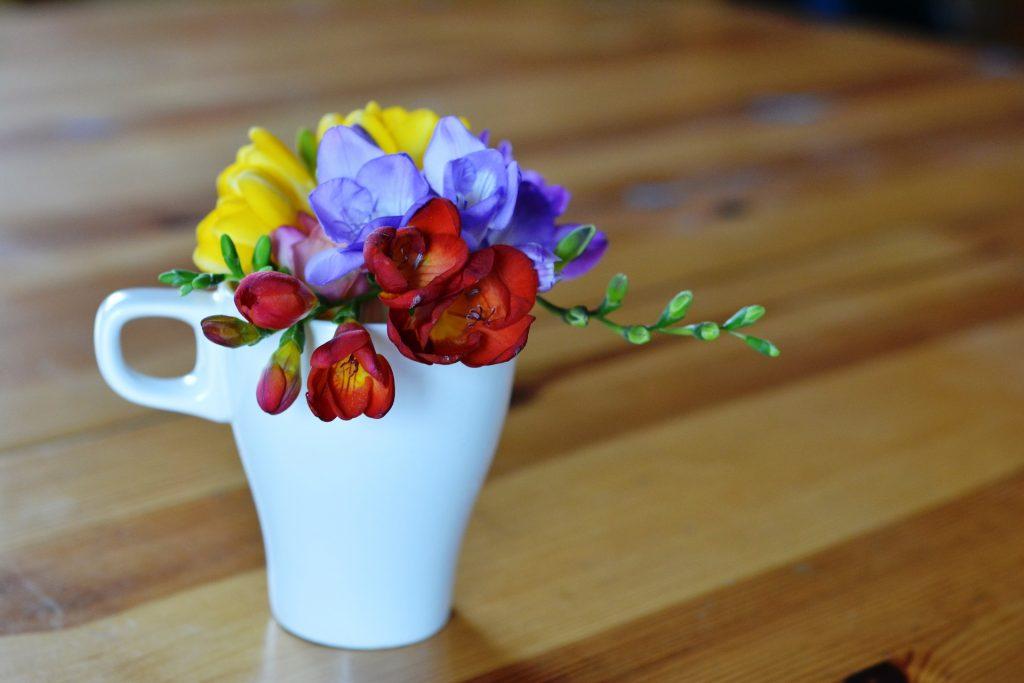 frézia, farebné frézie v hrnčeku položené na stole