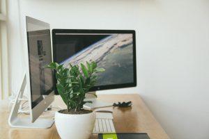 kancelaria, pracovný stol, pocitac, izbové rastliny