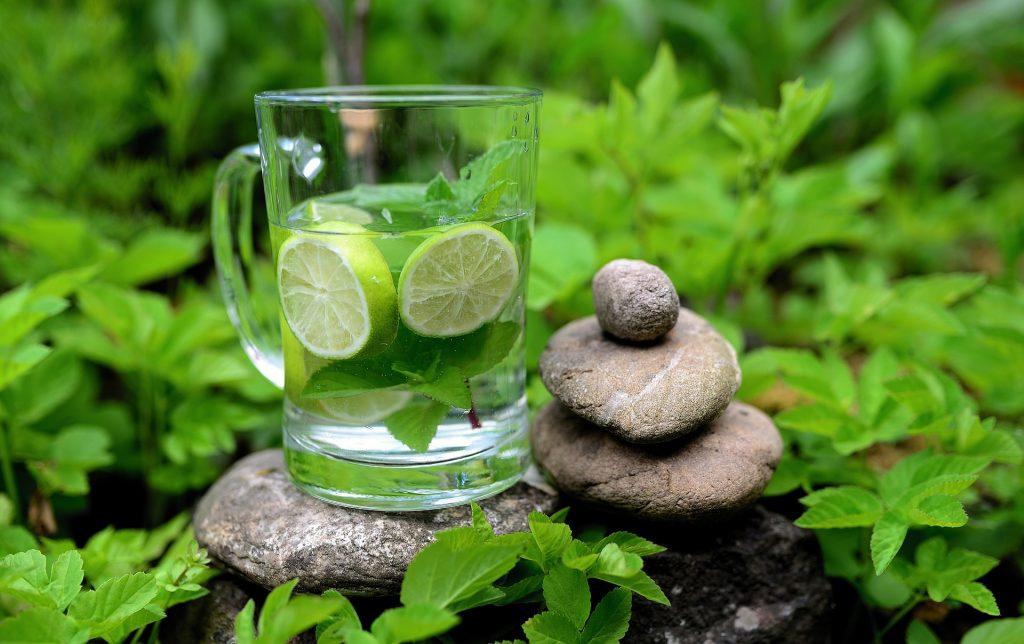 bylinky mäta a medovka  nápoj limonada